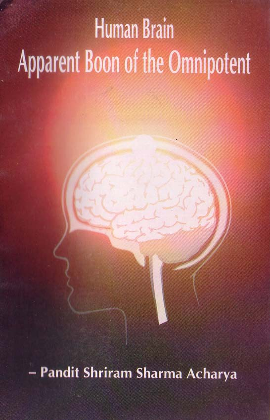 EP10 - Human Brain: Apparent Boon of the Omnipotent